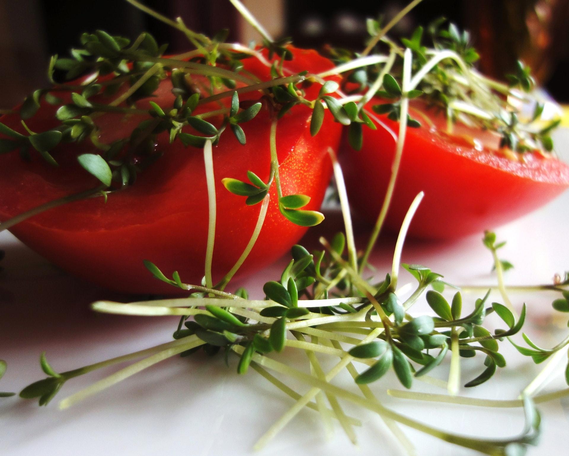 Doporučuji zkusit klíčení semínek, je to zdravá bomba!