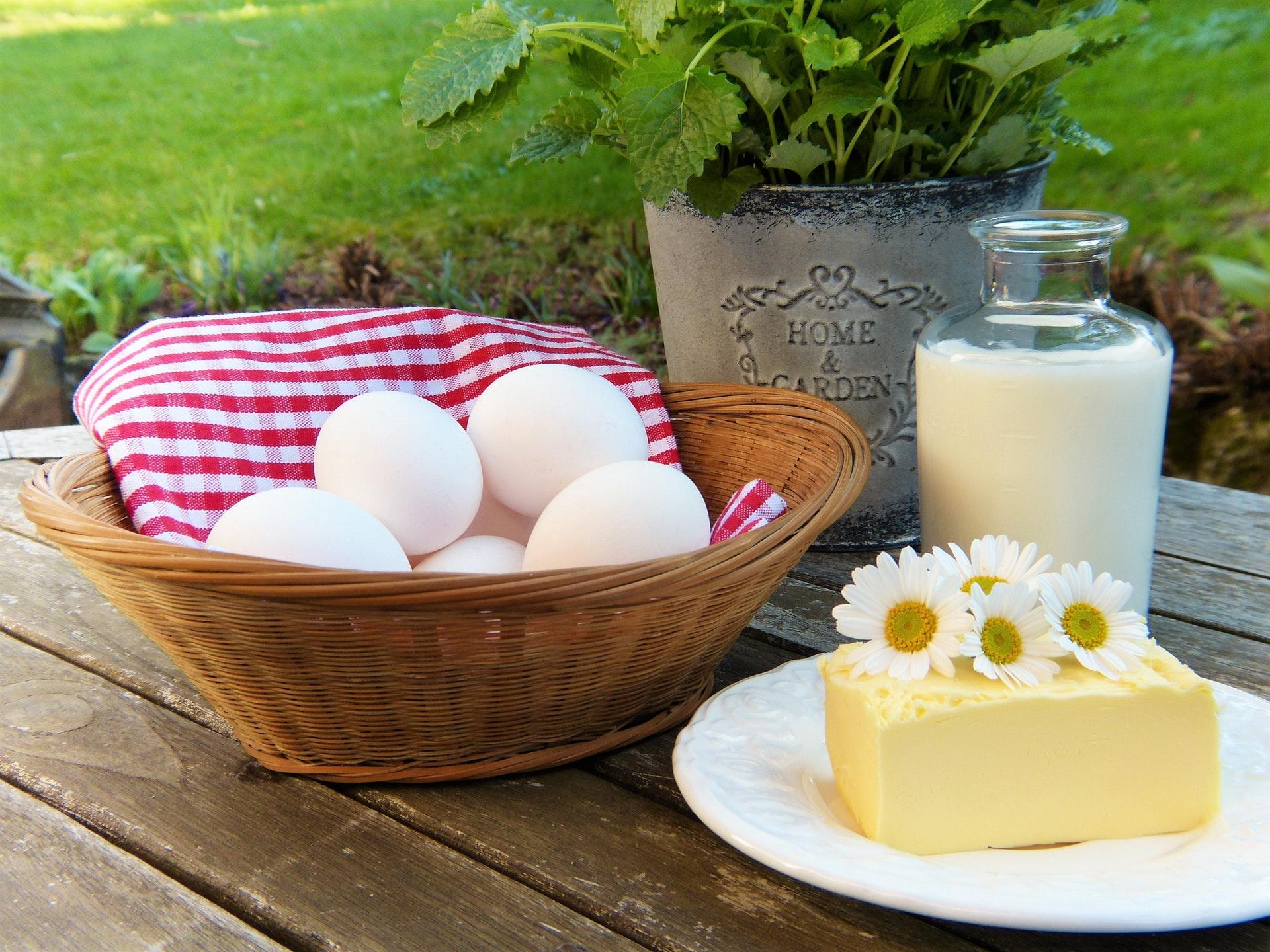 Pohled na mléko a mléčné výrobky